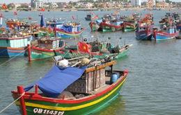 Tổ hợp tác sản xuất - điểm tựa giúp ngư dân vươn khơi