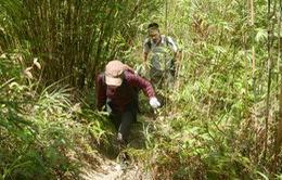 Siết chặt leo núi Fansipan sau vụ sinh viên mất tích