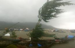 Hải Phòng, Thái Bình chủ động phòng chống bão số 5
