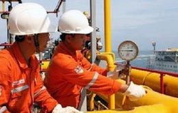 Đã khống chế được điểm rò rỉ đường ống khí Nam Côn Sơn