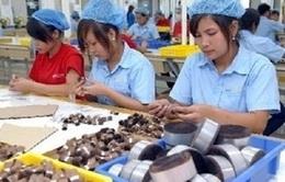 Các dự án FDI tăng vốn đầu tư thêm hơn 5 tỷ USD