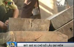 Bắt vụ vận chuyển gỗ trái phép lớn tại Bình Định