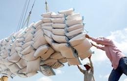 Bàn giải pháp nâng cao giá trị xuất khẩu gạo Việt Nam