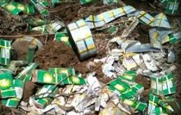 Tình tiết mới vụ chôn thuốc trừ sâu trái phép tại Thanh Hóa