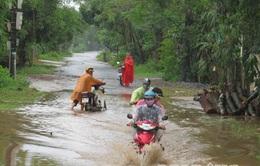 Bão số 8 nhấn chìm 800 ngôi nhà ở Quảng Trị