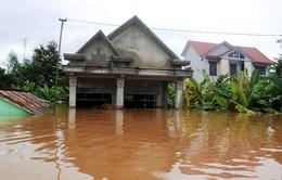 Trên 3000 ngôi nhà tại Quảng Bình bị ngập vì bão số 8