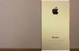 Tiếp viên Vietnam Airlines buôn lậu 50 iPhone 5S