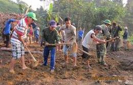 Tiền Giang: Hỗ trợ khai hoang đồng ruộng 15 triệu đồng/ha