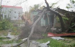 Quảng Bình, Quảng Trị nỗ lực khắc phục hậu quả bão số 10