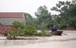 Thiệt hại do bão số 10 ước tính gần 5.000 tỷ đồng
