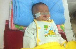 Xin cứu bé đau tim nghẹt đường thở