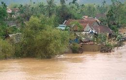 VIDEO: Nhà cửa tại Quảng Bình chìm dần trong biển lũ