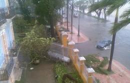 Miền Trung thiệt hại nặng nề sau bão mạnh