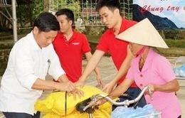 Chiếm hàng cứu trợ lụt bão: Phạt từ 5-10 triệu đồng