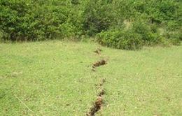 Tìm ra nguyên nhân vết nứt dài 600m ở Hà Tĩnh