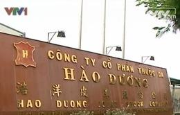 Xử lý nghiêm sai phạm về môi trường của công ty Hào Dương