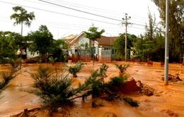 Vỡ hồ nước thải titan tại Bình Thuận: Đơn vị khai thác trong thời gian đình chỉ