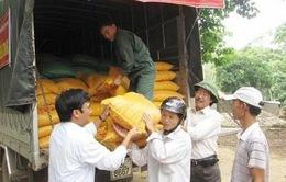 Nhiều tổ chức, cá nhân hướng về đồng bào lũ lụt miền Trung