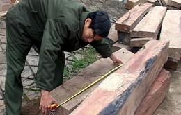Bắt 2 vụ buôn lậu gỗ quý hiếm quy mô lớn