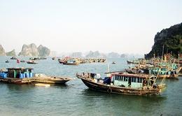Kiên Giang: Tăng cường kiểm tra sử dụng chất nổ khai thác hải sản