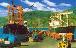 Cảng Quy Nhơn lần đầu tiên đạt 6 triệu tấn hàng thông quan