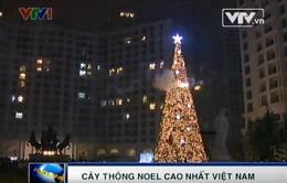 Cây thông Giáng sinh cao nhất Việt Nam tại Royal City