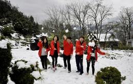 Hàng vạn khách du lịch đổ về Sa Pa chiêm ngưỡng tuyết rơi