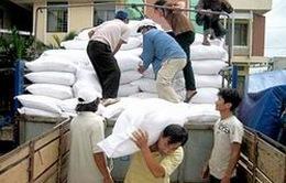 Quảng Ngãi phân bổ hơn 3.000 tấn gạo cứu đói