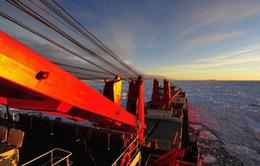 Mỹ cử tàu phá băng tới Nam Cực giải cứu tàu Nga và Trung Quốc