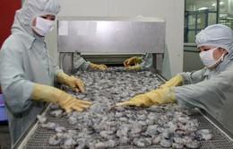 Xuất khẩu tôm lần đầu tiên đạt giá trị trên 3 tỷ USD