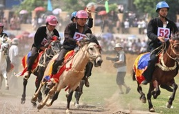 Đưa lễ hội đua ngựa của đồng bào Mông về Hà Nội