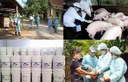 Xuất vaccine cho các địa phương phòng chống dịch bệnh