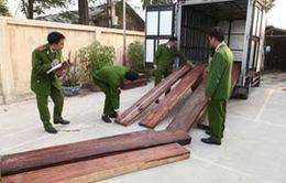Phát hiện vụ buôn lậu gỗ quý qua đường hàng không