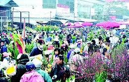 Hà Nội: Nhộn nhịp chợ hoa Quảng Bá ngày giáp Tết