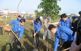 Quảng Trị: Phát động Tết trồng cây Xuân Giáp Ngọ