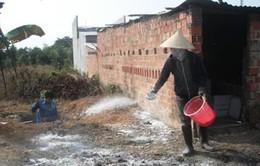 Xuất hiện dịch cúm gia cầm ở tỉnh Kon Tum