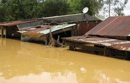 Chưa có cơ sở xét trách nhiệm bồi thường của thủy điện tỉnh Quảng Nam