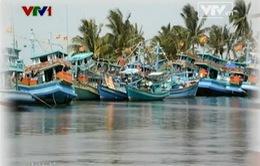 Xây dựng thể chế Đặc khu hành chính - kinh tế ở Việt Nam