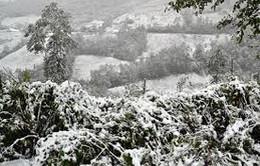 Sẽ xuất hiện băng tuyết ở vùng núi phía Bắc