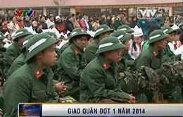Các địa phương giao quân đợt 1 năm 2014