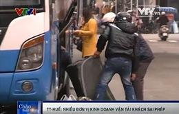 TT- Huế: Nhiều đơn vị kinh doanh vận tải khách sai phép