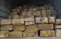 Quảng Trị: Bắt giữ xe vận chuyển 2 tấn gỗ lậu quý hiếm