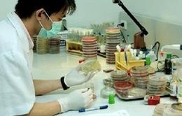 Phát hiện hai bệnh nhân nhiễm cúm A/H1N1 tại Thanh Hóa