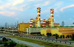 Khí được cấp trở lại cho các nhà máy điện Cà Mau