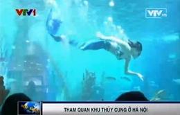 Tham quan thủy cung lớn nhất Việt Nam trong lòng Hà Nội