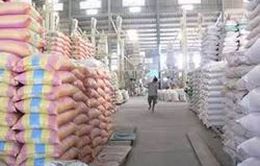 Hỗ trợ gạo cho tỉnh Điện Biên