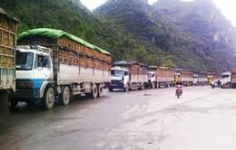 Dưa hấu ùn ứ ở Tân Thanh: Đề nghị được xuất hàng ở các cửa khẩu khác