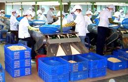 Ninh Thuận: Thu hút đầu tư từ quy hoạch hợp lý