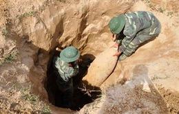 Hôm nay (4/4), ngày Thế giới phòng chống bom mìn