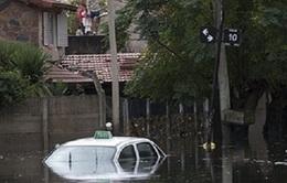 Argentina: Hơn 1.000 người phải sơ tán do lũ lụt nghiêm trọng